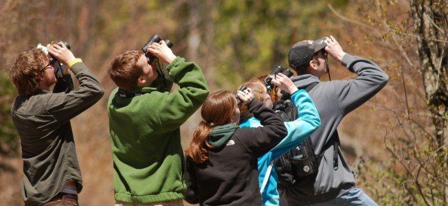 Best Birding Binoculars Buying Guide