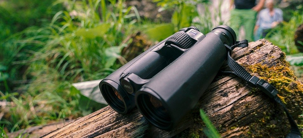 Best Birding Binoculars Under $500