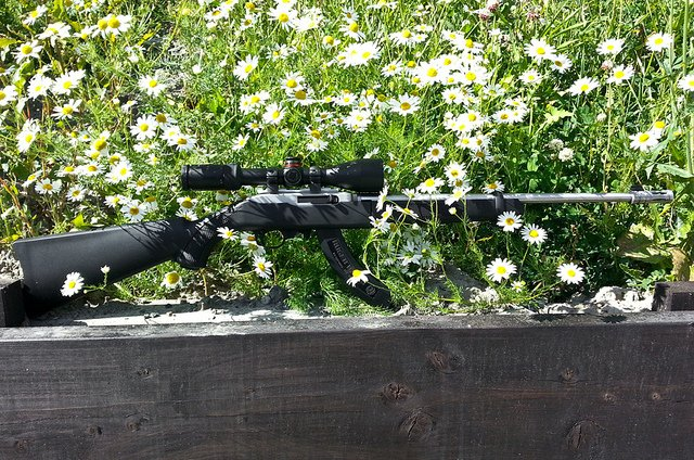 Best .22lr Scopes Buying Guide