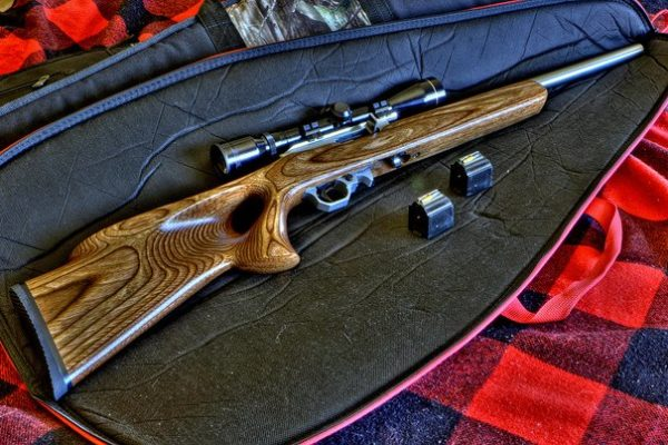 Top 10 Best Rimfire Scope In 2021 Reviews & Buyer's Guide