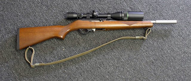 Top Rated Scopes for Ruger 10/22