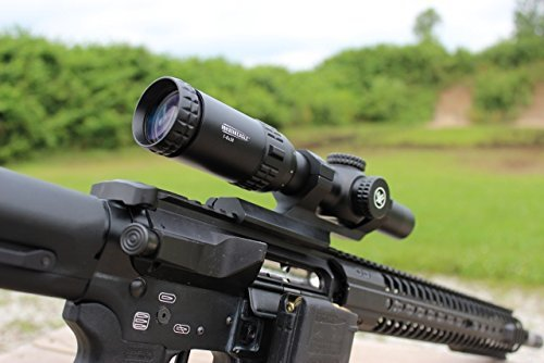Vortex Optics Strike Eagle 1-6x24 Reviews