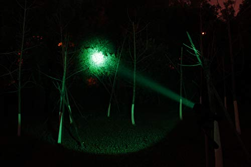 best predator hunting lights