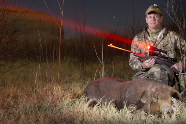 Top 10 Best Predator Hunting Lights On The Market 2021 Reviews