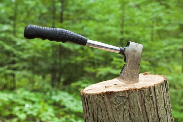 Top 10 Best Camping Axes and Hatchets in 2021 Reivews